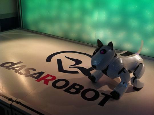 innorobot 2011 genibo dasarobot