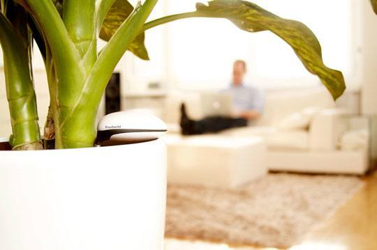koubachi wi fi plant sensor