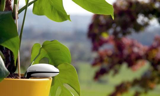 koubachi outdoor wi fi plant sensor