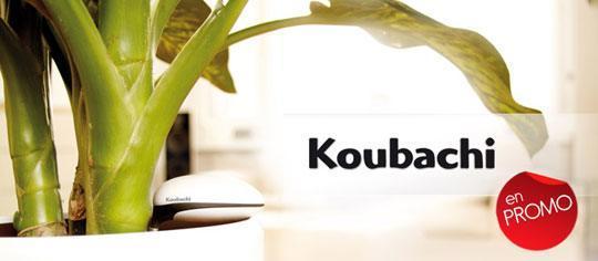 graphisme koubachi 01