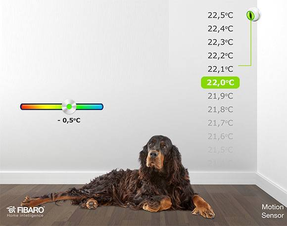 Fibaro_motion_sensor_FGMS-001_dog