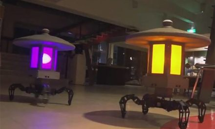 Toro-Bot, le robot lampe de jardin