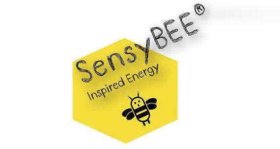 SensyBEE, un projet français de gestion d'énergie sur Indiegogo