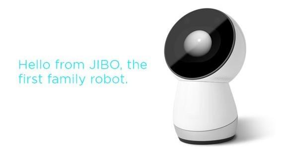 JIBO cover