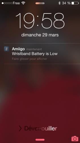 Amiigo_015