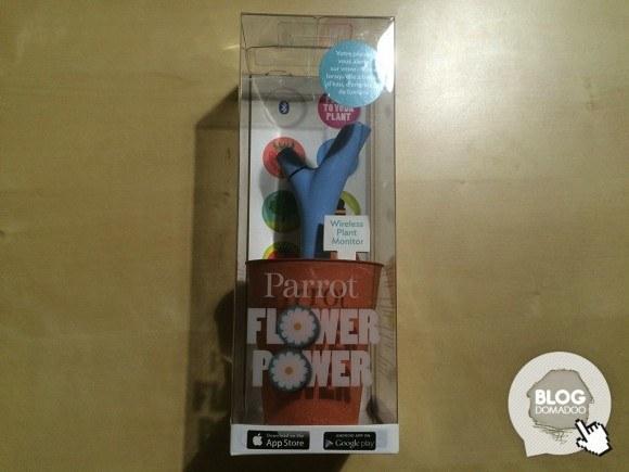 Flower_Power_001