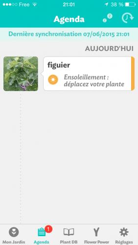 Flower_Power_029