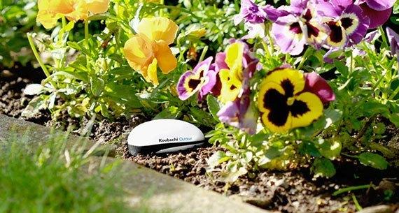 koubachi outdoor garden2