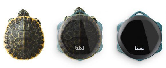 bixi-origin_turtle