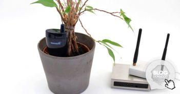 arrosez plantes imagintronix capteur 0 2