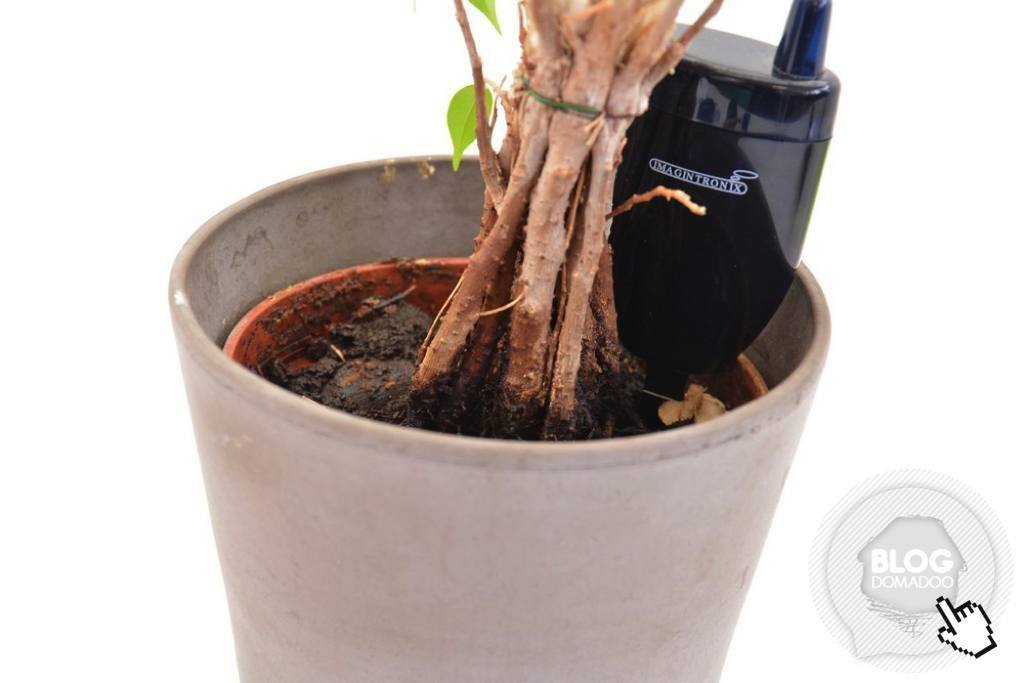 Avec Imagintronix, connaissez le moment parfait pour arroser vos plantes ! (et pour moins de 10 euros)