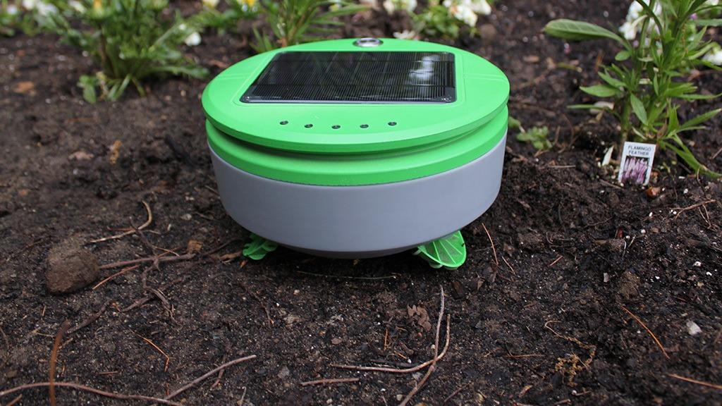 Tertill, le robot solaire qui désherbe votre jardin