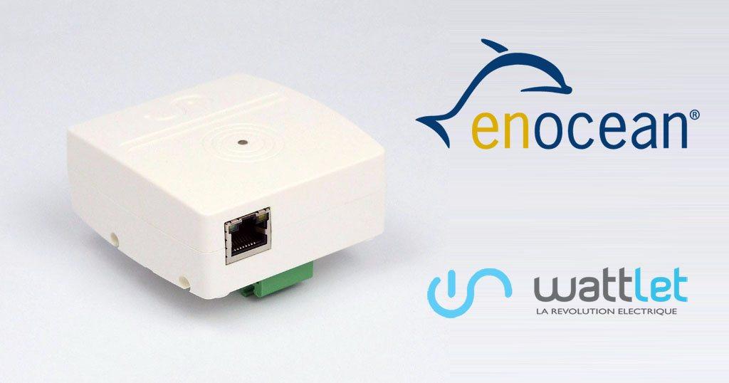 Wattlet annonce son nouveau Wattcube Web avec connectivité EnOcean