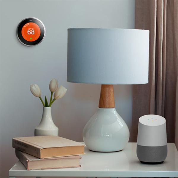 nest google home01