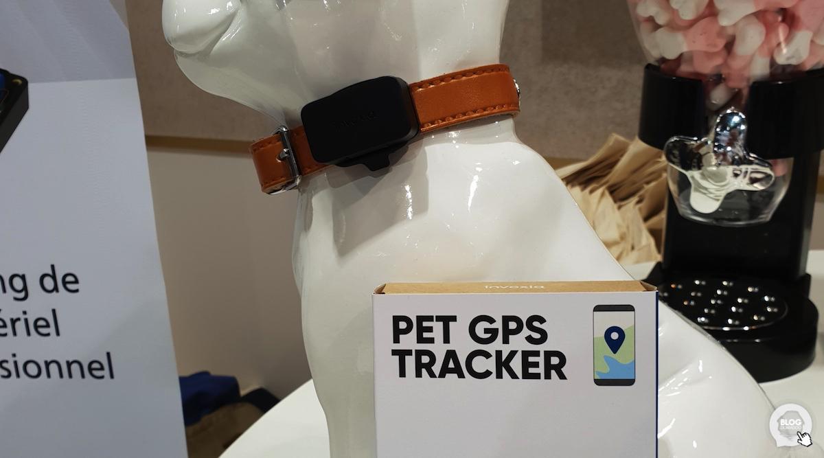 Invoxia lance Pet Tracker, pour suivre vos animaux de compagnie sans s'inquiéter de l'autonomie !